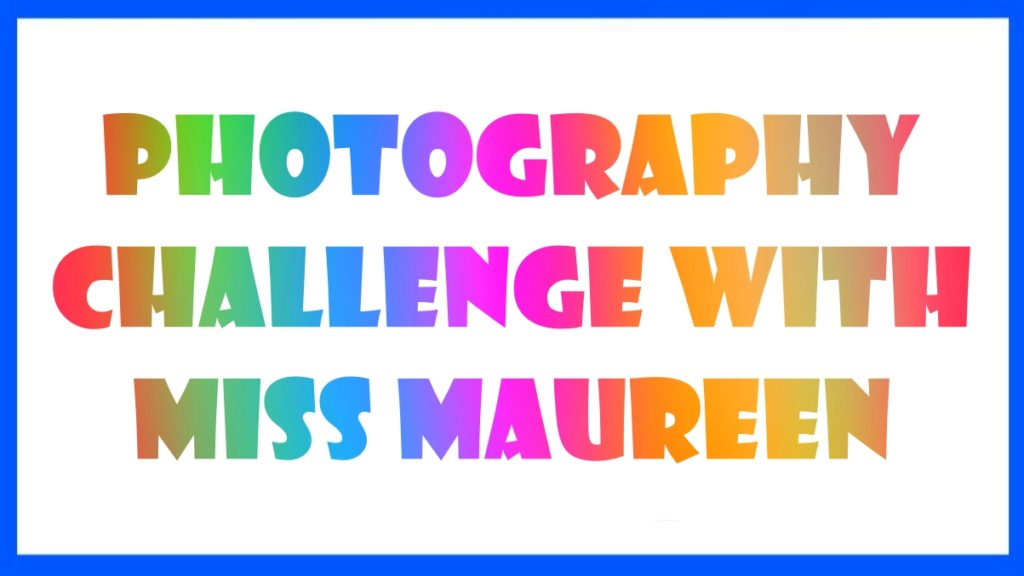 Photo Challenge With Miss Maureen Week 2