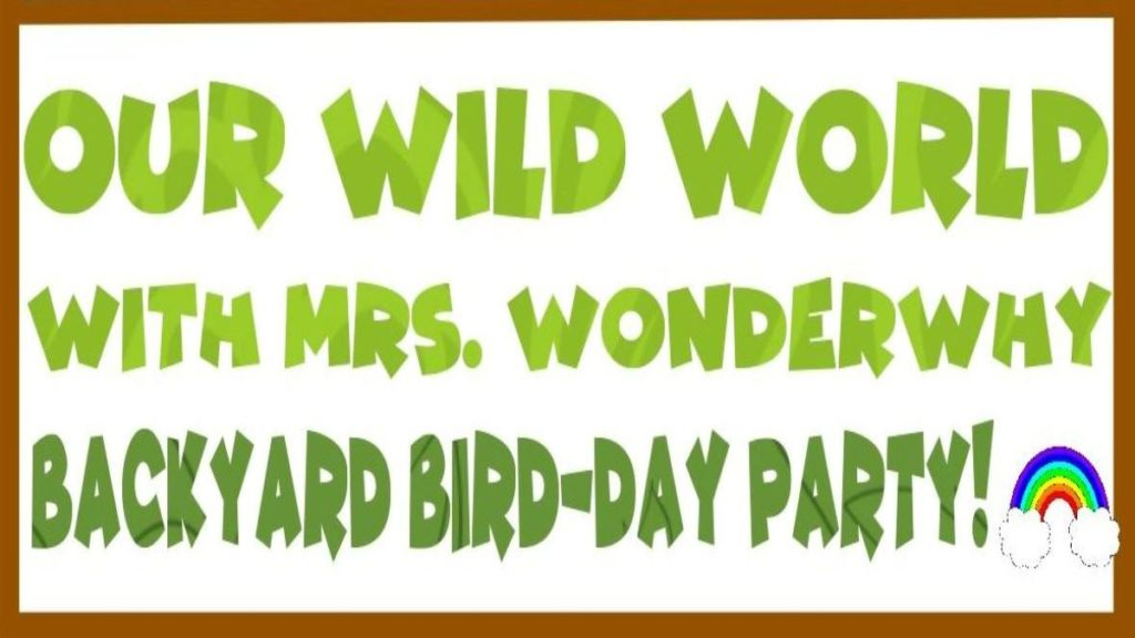 Mrs. Wonderwhy Bird Party