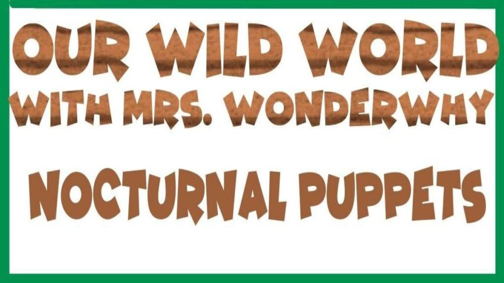 Mrs. WonderWhy – Nocturnal Puppets